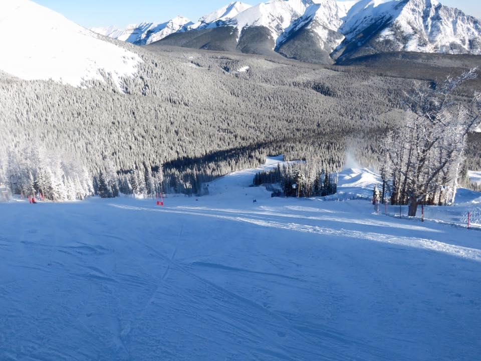 USA Experience: NY+Colorado (Pulc/Chi/Gio) 22 November/4 December